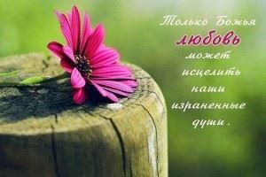 Только Божия любовь