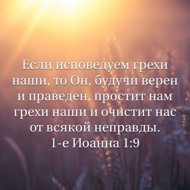 Простит и очистит